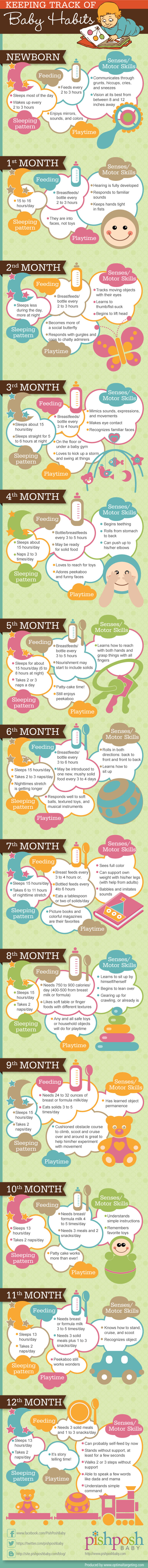 infographic-baby-stages