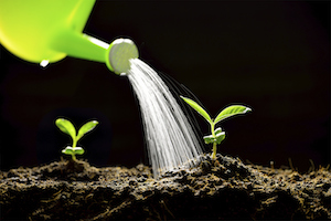 How to Expand Your Lead Nurturing Strategy Beyond Just Email [SlideShare]