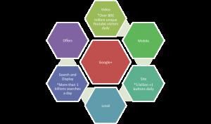 The Google+ social spine