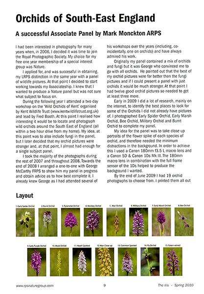 magazine-page-example