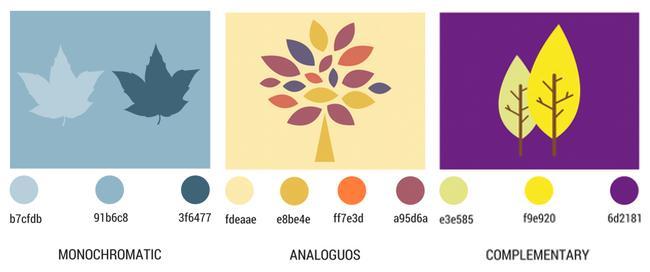 color-relationships