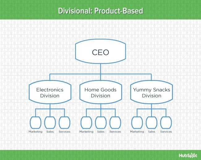 functional organizational structure advantages and disadvantages