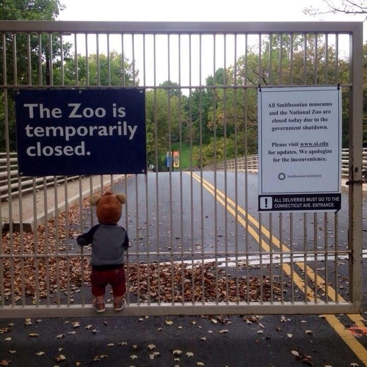 1zooisclosed