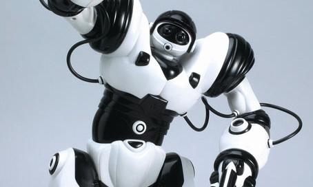 2002-Robosapiens