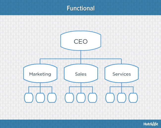 Blue diagram of functional organizational structure