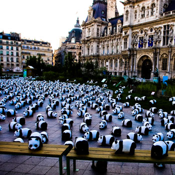 Guerrilla Marketing: WWF Pandas