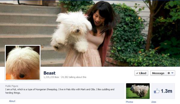 beast facebok resized 600