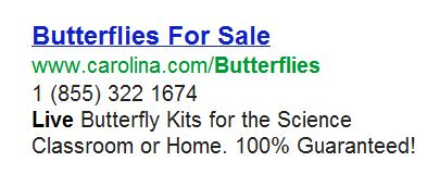 butterfliesfor sale