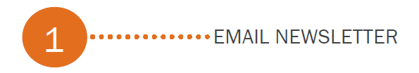 email type 1