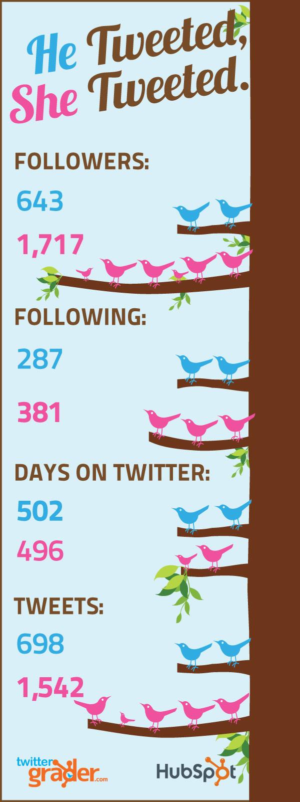 HubSpot Twitter Infographic