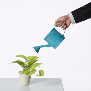 5 Steps for Creating Successful Lead Nurturing Campaigns