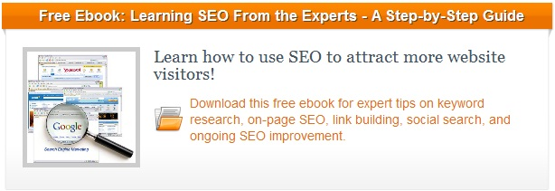 SEO ebook blog CTA