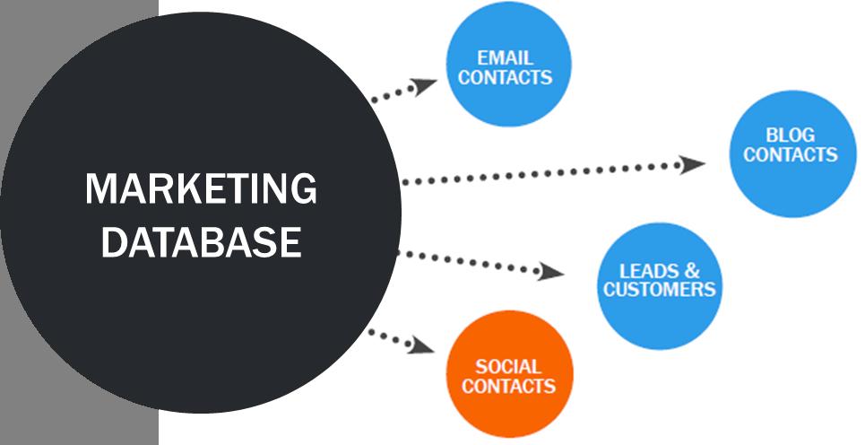 marketing database social media