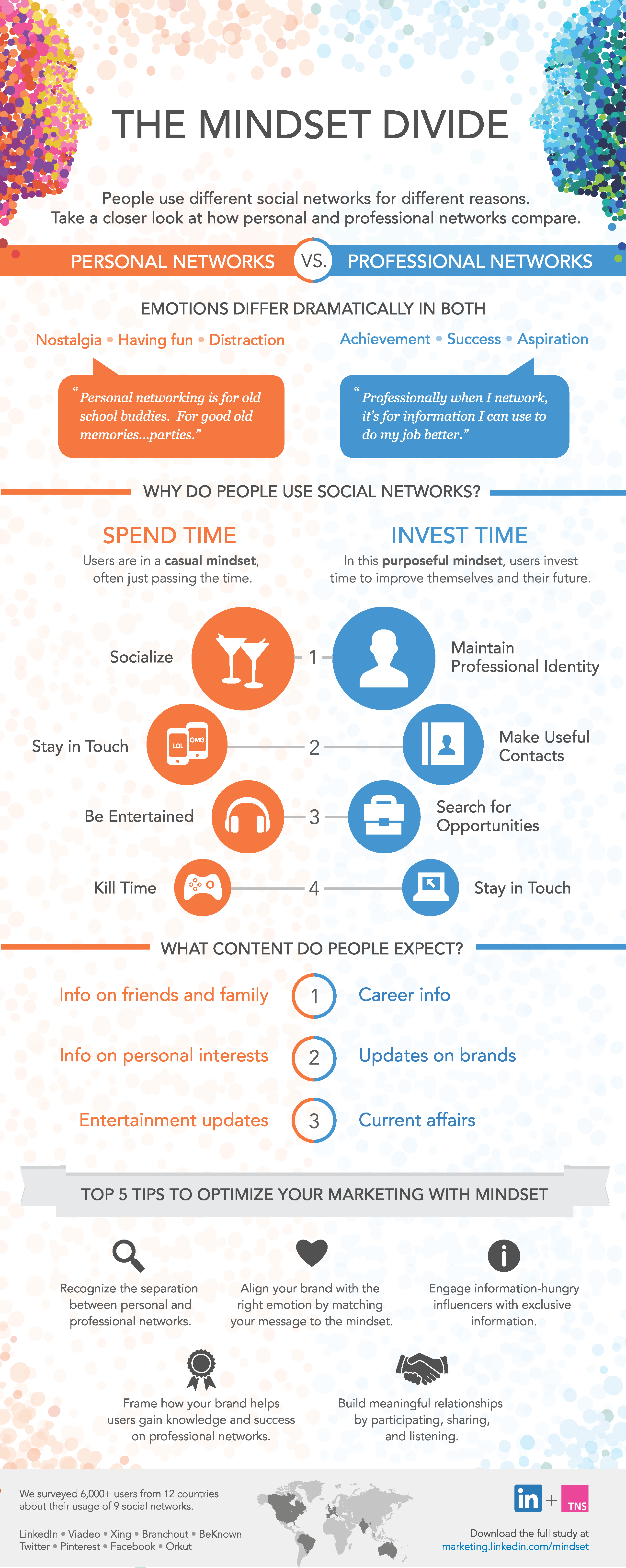Mindset Divide Infographic