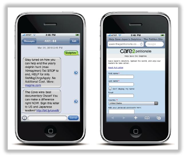 raising awareness with sms