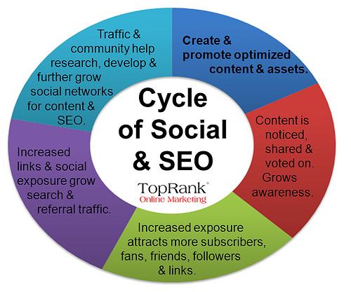 social media and seo cycle