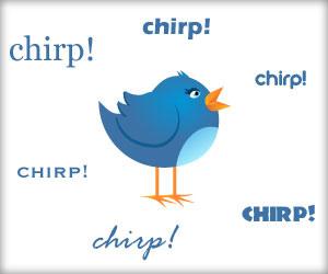 twitter bird chirping