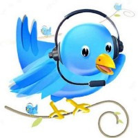 twitter customer service bird