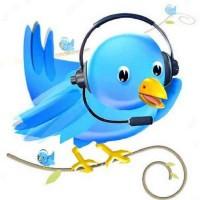 twitter customer service bird