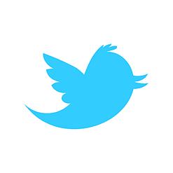 twitter newbird boxed blueonwhite