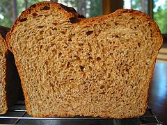 whole wheat bread twitter