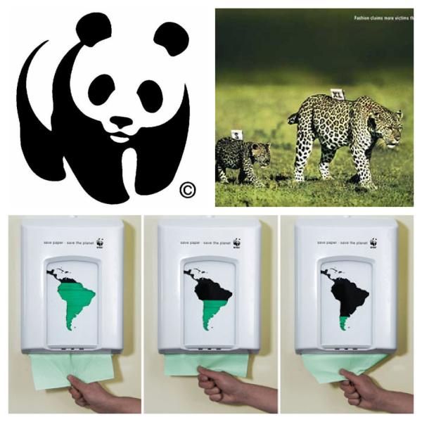 WWF resized 600