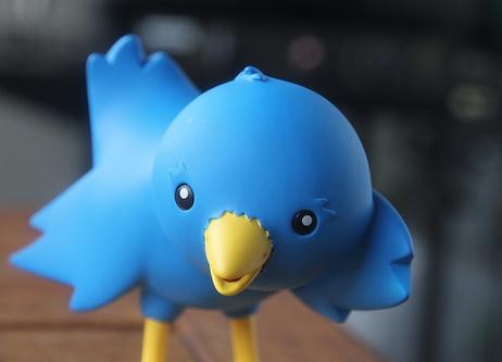 twitter blue bird