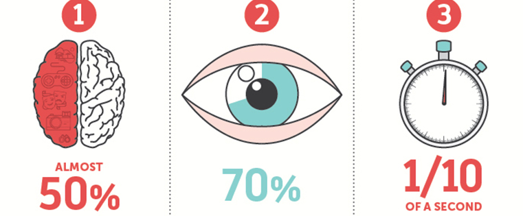 The Science Behind Why Our Brains Crave Infographics (In an Infographic)