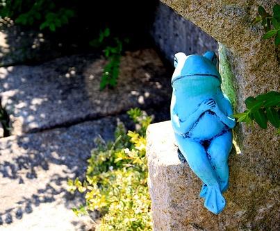 blue-frog