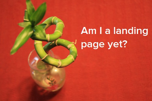 What Is a Landing Page? [FAQs]