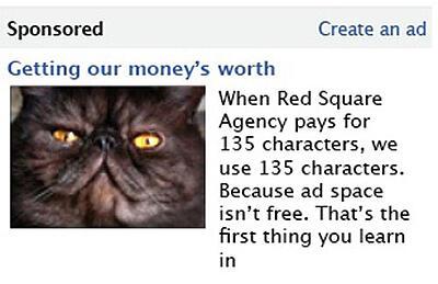 red-sqaure-facebook-cat