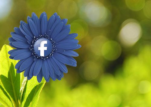 facebook-embedded-posts-1