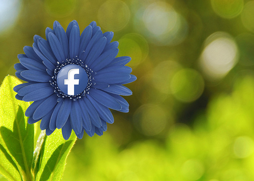How to Embed a Facebook Post [Quick Tip]