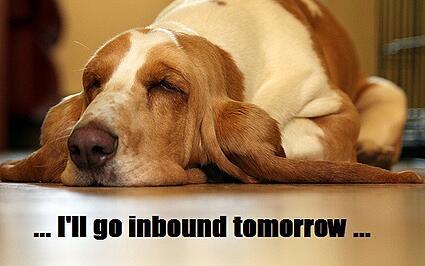 inbounddog