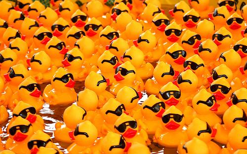 rubber-ducks