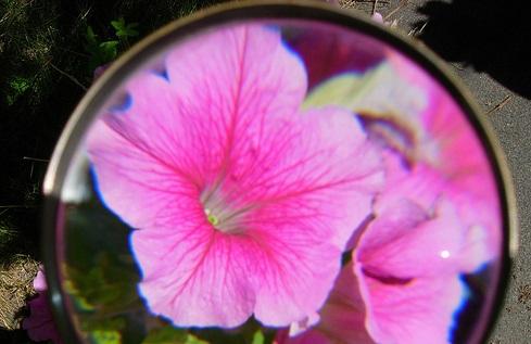 optimize-visual-content-seo