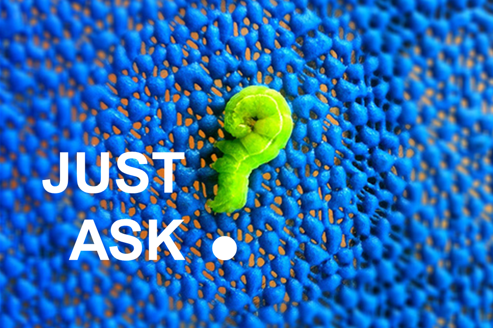 just-ask-caterpillar