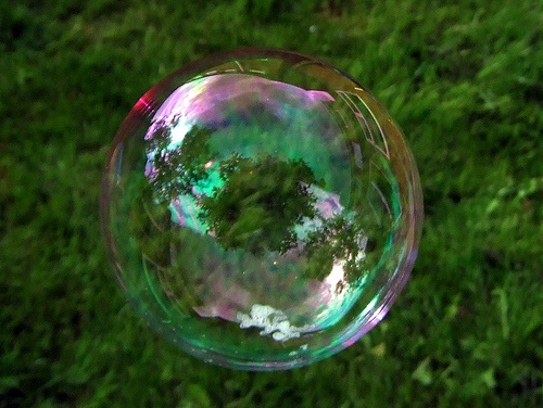 search-bubble