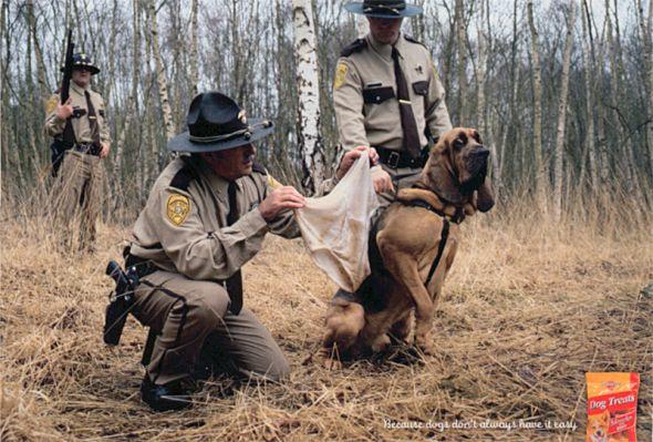 pedigree_policedog