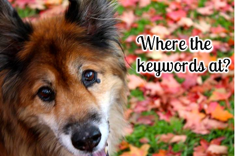 51 Ridiculous Keywords Google Won't Let Me Track Anymore