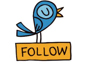 tweet-follow-bird