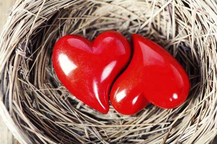 yin-yang-heart