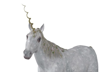 Unicorn DNA: What All the Best AdWords Advertisers Have in Common