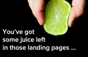 Want to Squeeze More Conversions Out of Your Landing Pages? Read This
