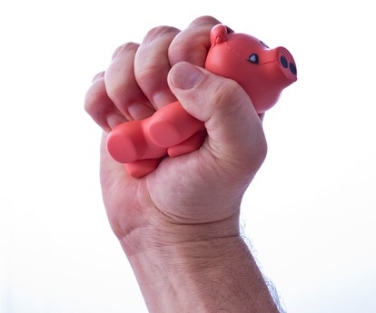stress-pig
