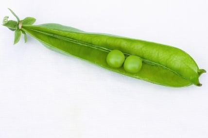 two-peas-pod