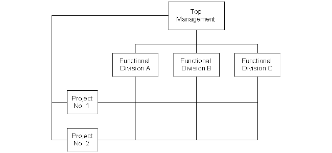 Matrixed_Org_Structure