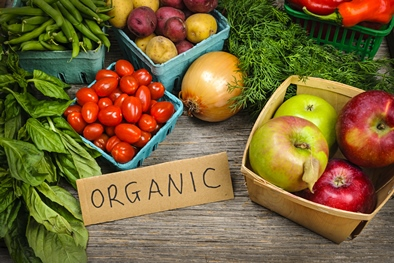 The Definition of Organic Search Results [In Under 100 Words]