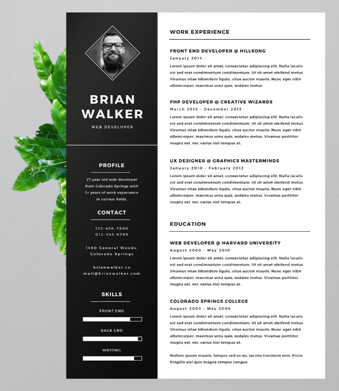 Creative resume template with vertical header and space for a headshot photo