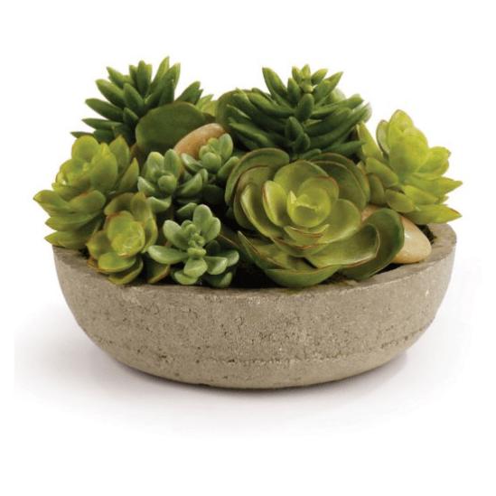 Terrarium or succulent garden client gift idea